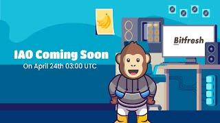 BITFRESH – Прозрачная Игровая Блокчейн - Экосистема | ОБЗОР