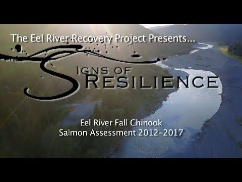 Eel River Recovery Project - Signs Of Resilience