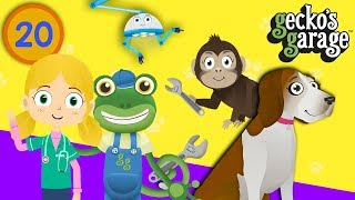 Learn Animals With Gecko & Dr Poppy | Gecko's Garage | Educational Animal Videos For Toddlers