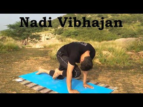 Nadi Vibhajan
