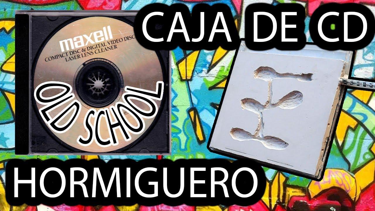 ASÍ ES COMO SE HACE UN HORMIGUERO CASERO ANTIFUGAS - CAJA DE CD CON ESCAYOLA