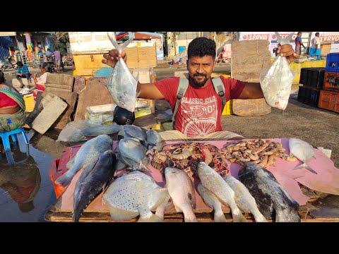 Chennai Fish Market/வித விதமான கடல் மீன்கள்/Nanga Romba Busy/NRB.