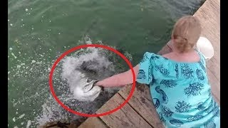 Hand Fishing Fails 2018 - Try to watch without laughing
