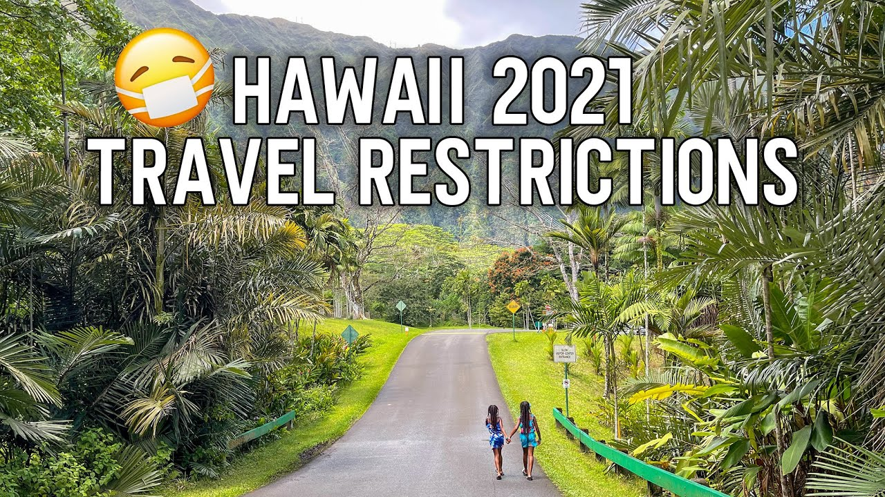 Don't Book Your Hawaii Trip Until You Watch This   Hawaii Travel  Restrictions 12