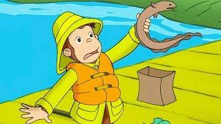 Georges le Petit Singe 🐵Georges Et L'Anguille 🐵Saison 1  🐵Dessin Animé 🐵Animation Pour Enfants