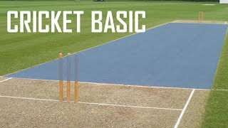 Cricket Basic Parameters - Cricket Fielding Positions - Batting Shots in Cricket