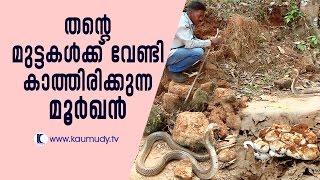 Snake Master 31/03/17 Vava Suresh