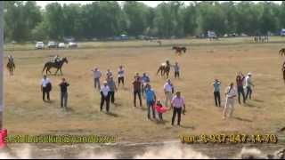 Конные скачки в честь 180- летия города Новоузенска.Автор Столбушкин
