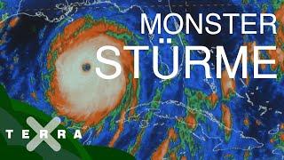 Hurrikane – so entstehen die gefährlichen Stürme   Terra X