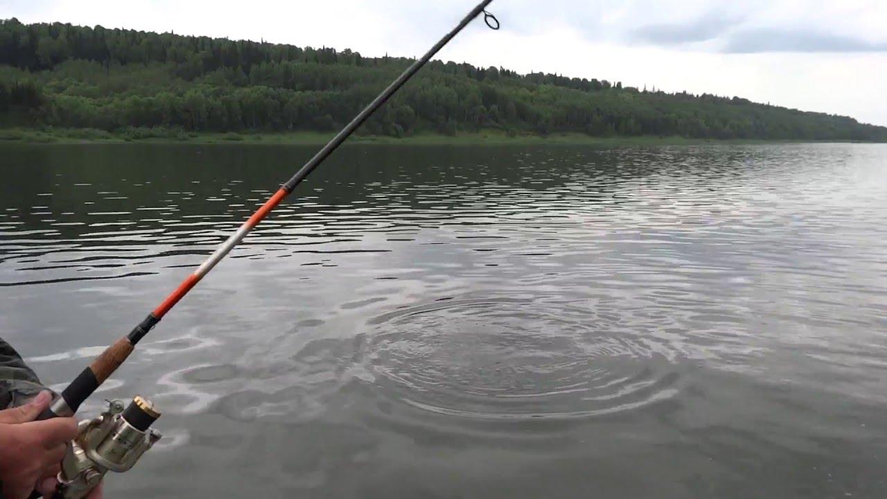 рыбалка в салтымаково видео