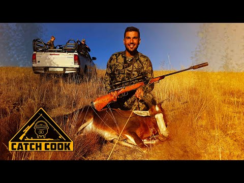 Blessbuck (Blesbok) Hunt in Cathcart | CATCH COOK