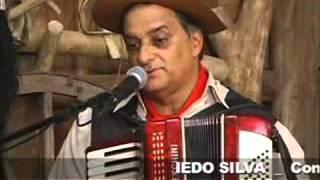 Iedo Silva - O melhor da música gaúcha