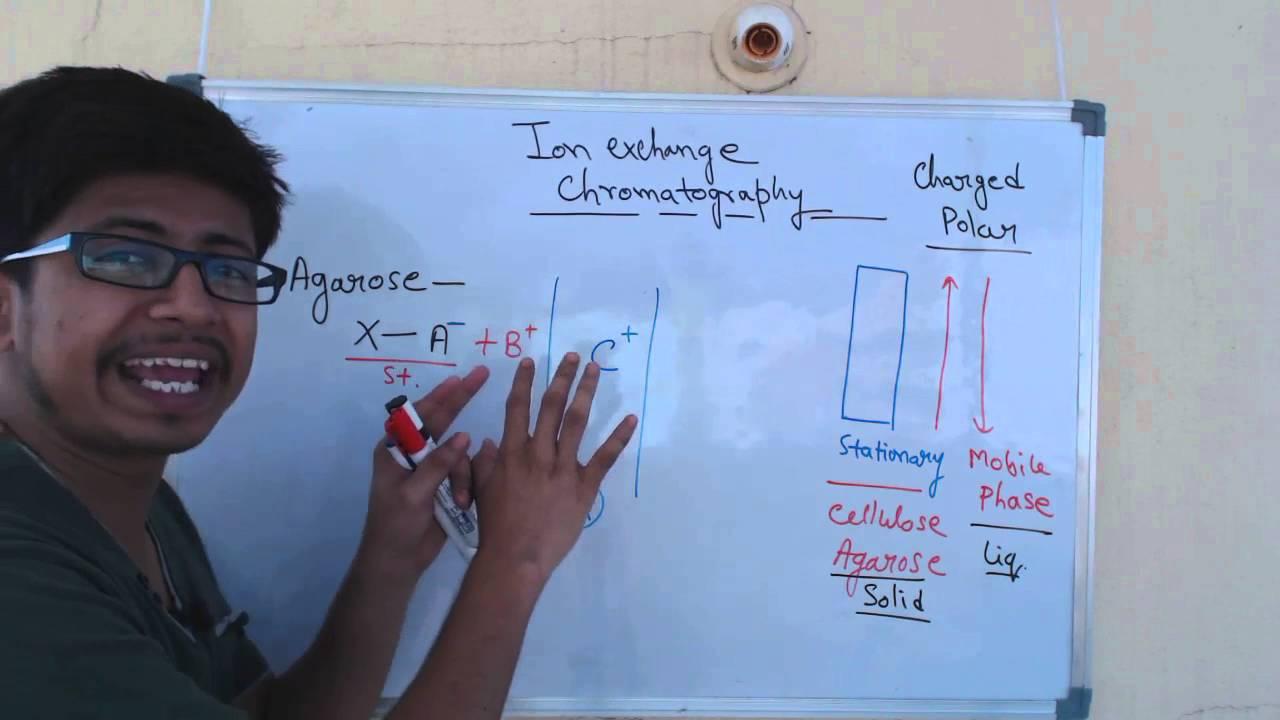 Ion exchange chromatography | cation exchange chromatography and anion  exchange chromatography