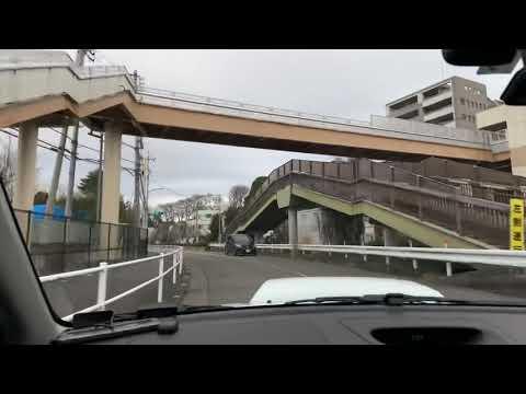PAPA DRIVE #HACHIOJI#JAPAN