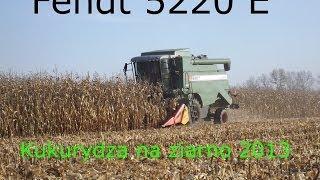 Kukurydza na ziarno 2013    Fendt 5220 E