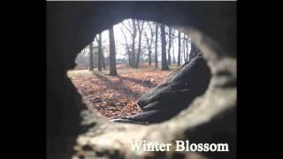 Andrea Terrano - Winter Blossom