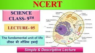 Science/विज्ञान Class 9th NCERT The fundamental unit of life Lecture 05 by Pooja Ma'am