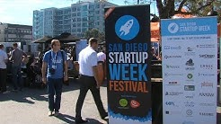 Is San Diego The Next Silicon Valley? No, Say Many Local Startup Workers