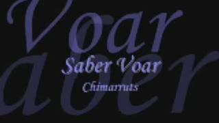 Saber Voar - Chimarruts (Letra)