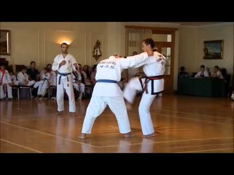 Masters Demo Tang Soo Do