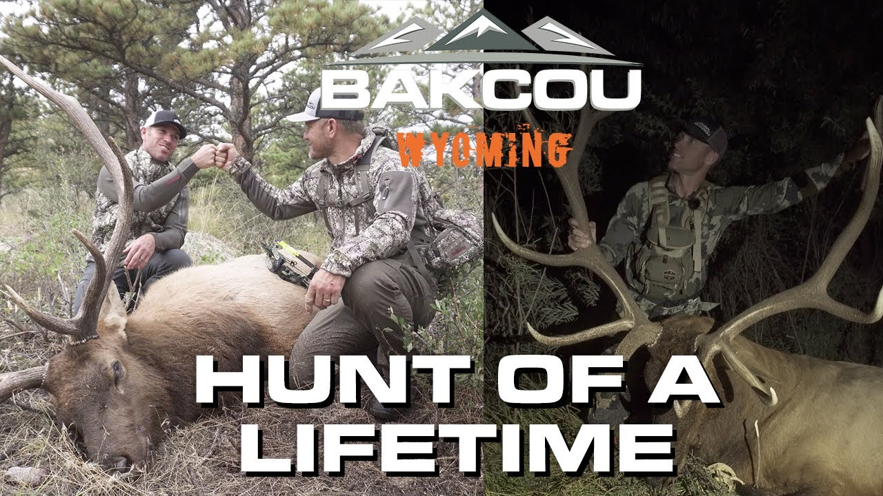 Bakcou: Tagged Out in Wyoming!