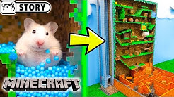 Hamster Vertical Maze - MINECRAFT WORLD 🐹 Hamsters in Terraria 🐹 Come and Enjoy - Homura Ham