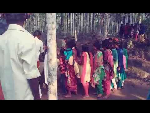 Traditional tribal dance wayanad kerala