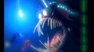 Deep Sea Phishing - A Phish Mix