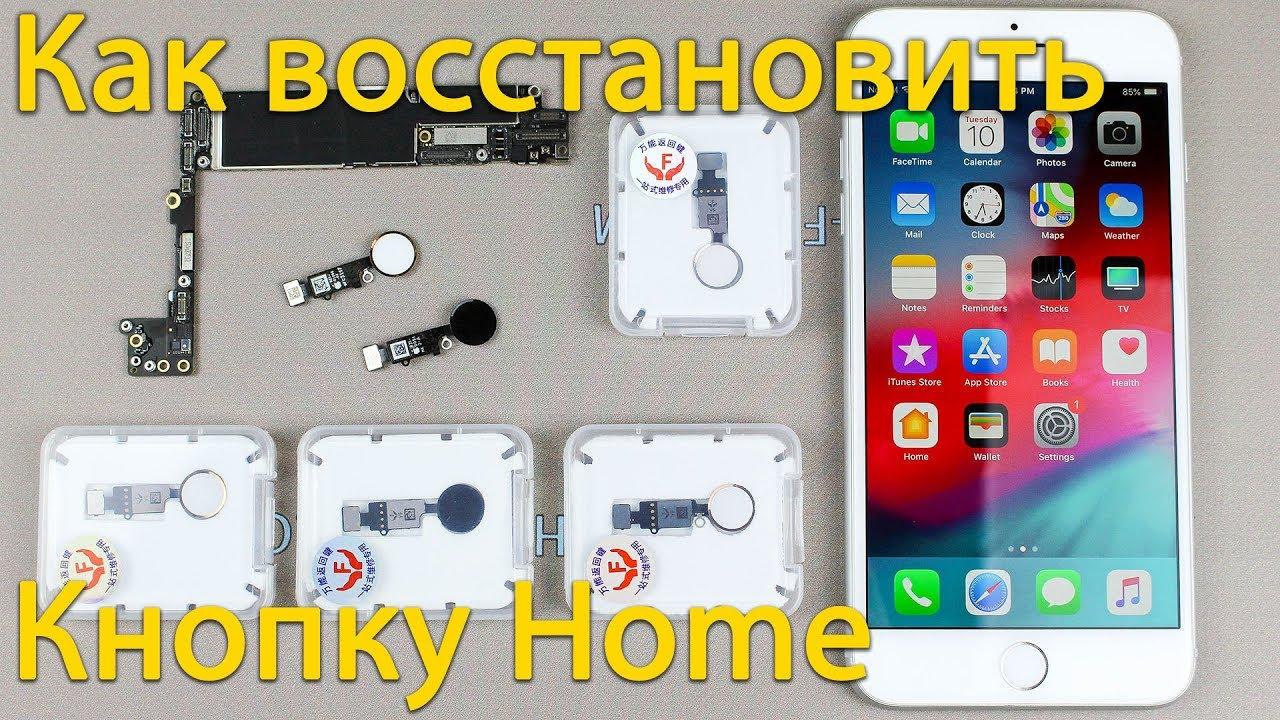 Что делать если перестала работать кнопка home на iPhone