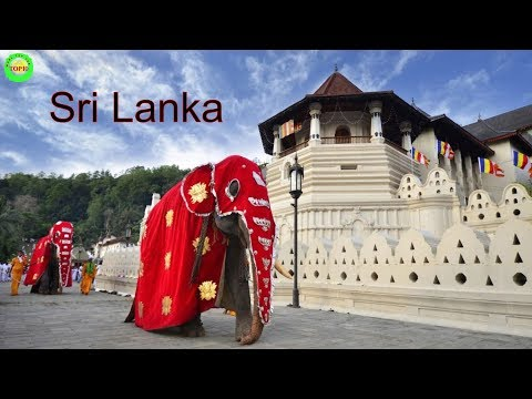 10 Drop Dead Beautiful Places in Sri Lanka You Have To Check Out Now