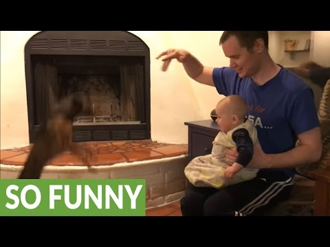 Cute baby can't stop laughing at jumping puppy