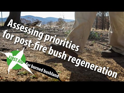 Assessing priorities for post-fire bush regeneration