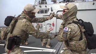 Спецназ Северной Кореи против Спецназа Южной Кореи! ОЧЕНЬ КРУТОЕ ВИДЕО!