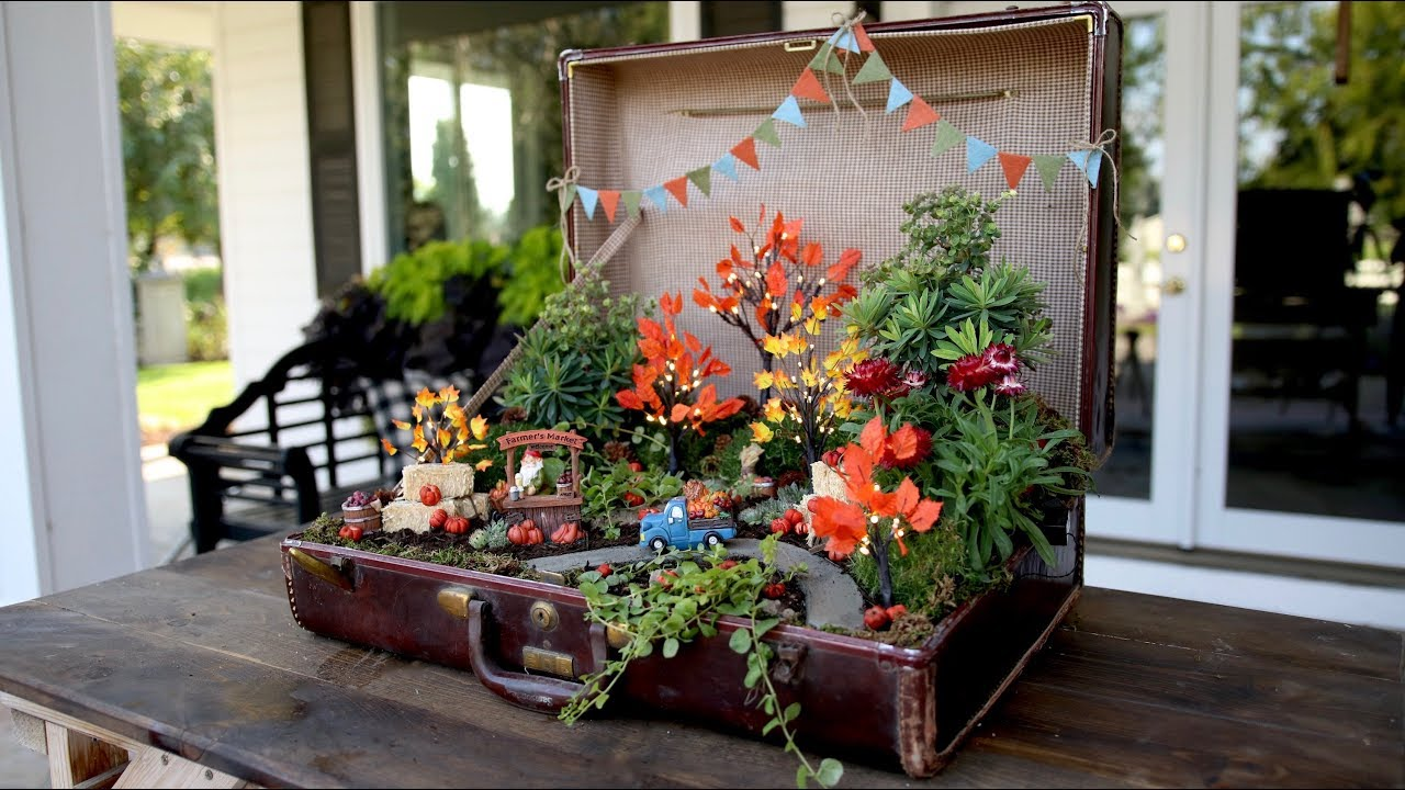 old-suitcase-turned-pumpkin-patch-miniature-garden-garden-answer