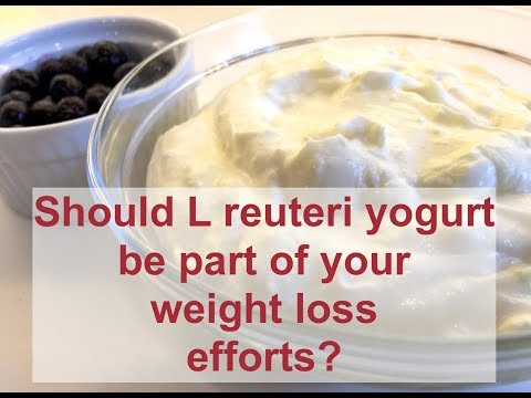 Should L Reuteri Yogurt Be Part Of Your Weight Loss Efforts?