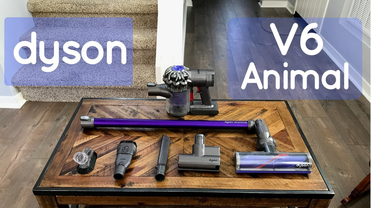 Image of: Dc59 Dyson V6 Animal Review Youtube Dyson V6 Animal Review Youtube