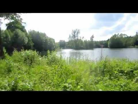 Countryside life in Denmark