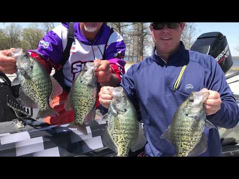 Reelfoot Crappie With Ronnie Capps