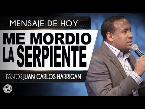 ME MORDIO LA SERPIENTE   Pastor Juan Carlos Harrigan  