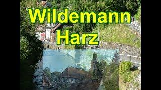 Wildemann- gemütliche Bergstadt in Landkreis Goslar im Oberharz * Niedersachsen thumbnail