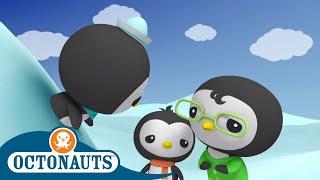 Octonauts - Stuck in Snow | Cartoons for Kids | Underwater Sea Education