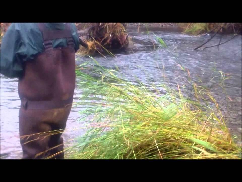 Coastal Assault Pt.1 Fall Chinook Bobber Fishing - YouTube