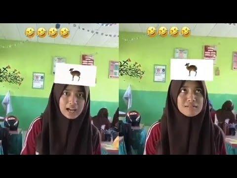 Viral Tebak Tebakan Hewan Berkaki Tiga Lucu Banget Youtube