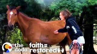 Girl Hears What's Happening To Horses In Australia  So She Does THIS | The Dodo Faith = Restored
