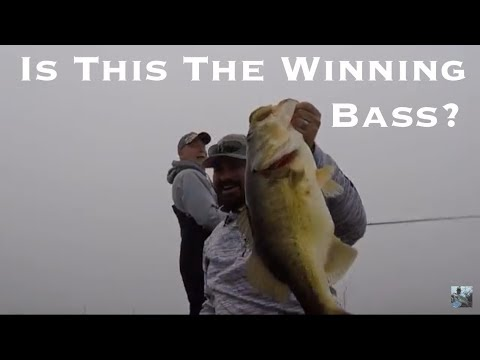 Lake Fork Bass Fishing Tournament Did I Just Win Youtube