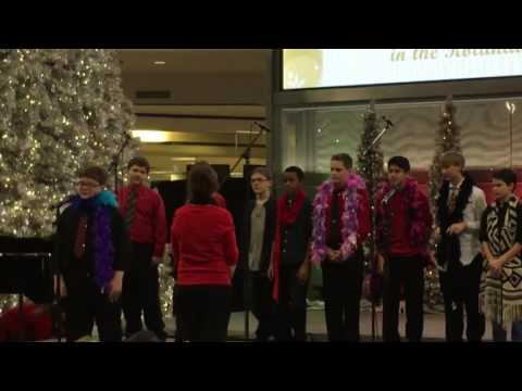 Nicollet middle school Singers & Swingers at Mall of America 11/28/2016