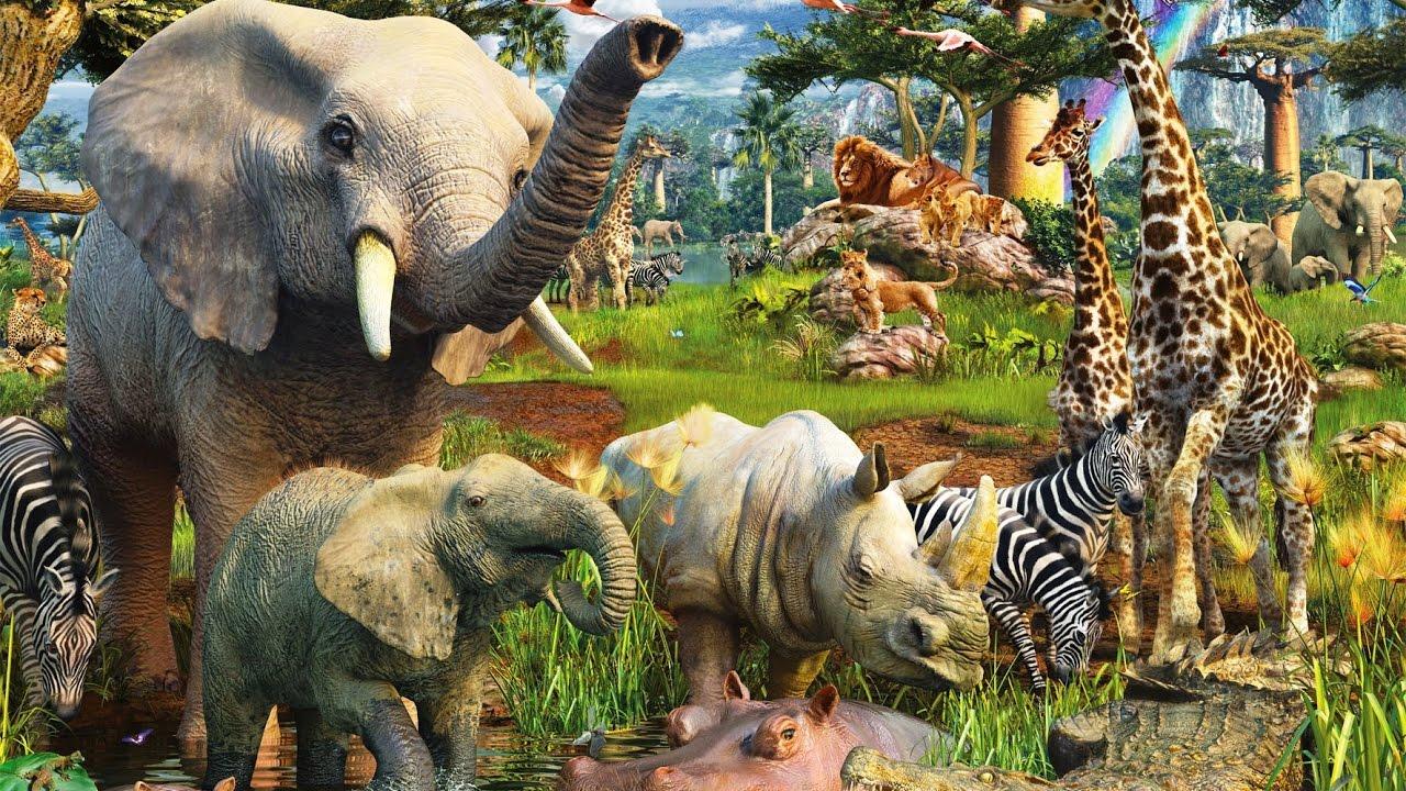 Животные Африки для детей, Дикие животные для детей ...