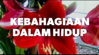 """Download Video Video 30 detik """"Kebahagiaan Dalam Hidup"""" status WhatsApp MP3 3GP MP4"""