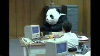 Google Panda: El Algoritmo SEO Social