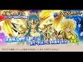 聖闘士星矢 ゾディアックブレイブ《 水瓶座 カミュ バースデー記念!10連ガシャ 》